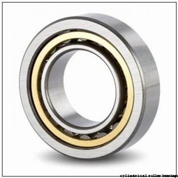 30 mm x 55 mm x 34 mm  NKE NNCF5006-V cylindrical roller bearings