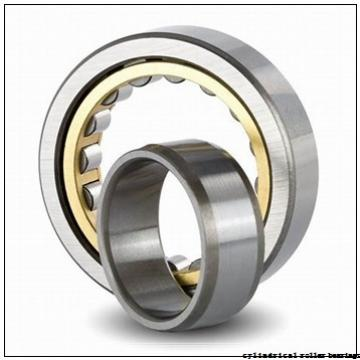 170 mm x 260 mm x 67 mm  NKE NCF3034-V cylindrical roller bearings