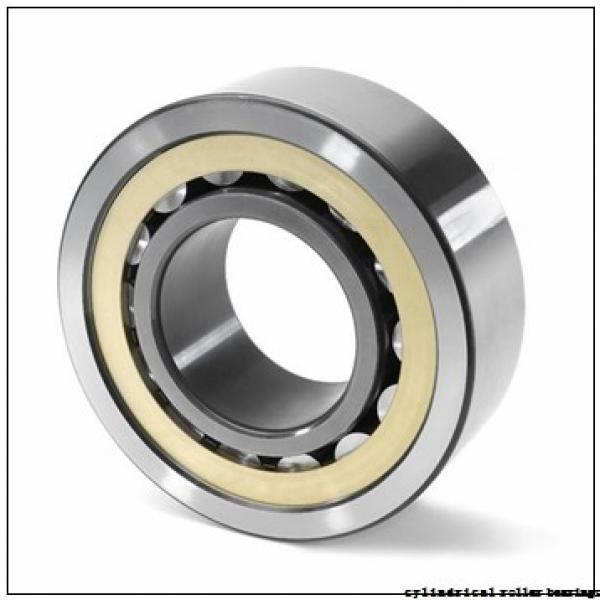 55 mm x 140 mm x 33 mm  NACHI NUP 411 cylindrical roller bearings #1 image