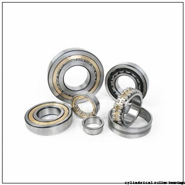50 mm x 130 mm x 31 mm  FBJ NJ410 cylindrical roller bearings #1 image